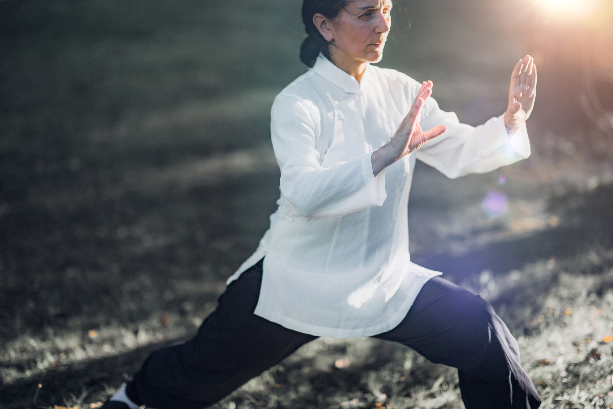 , Qi Gong – Life Energy and Skill