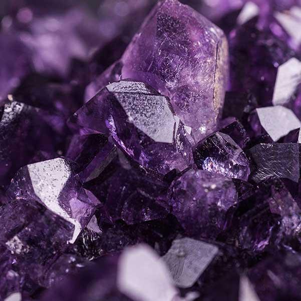, Salt of the Earth